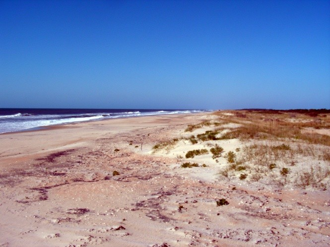 beach-in-ocracoke.jpg