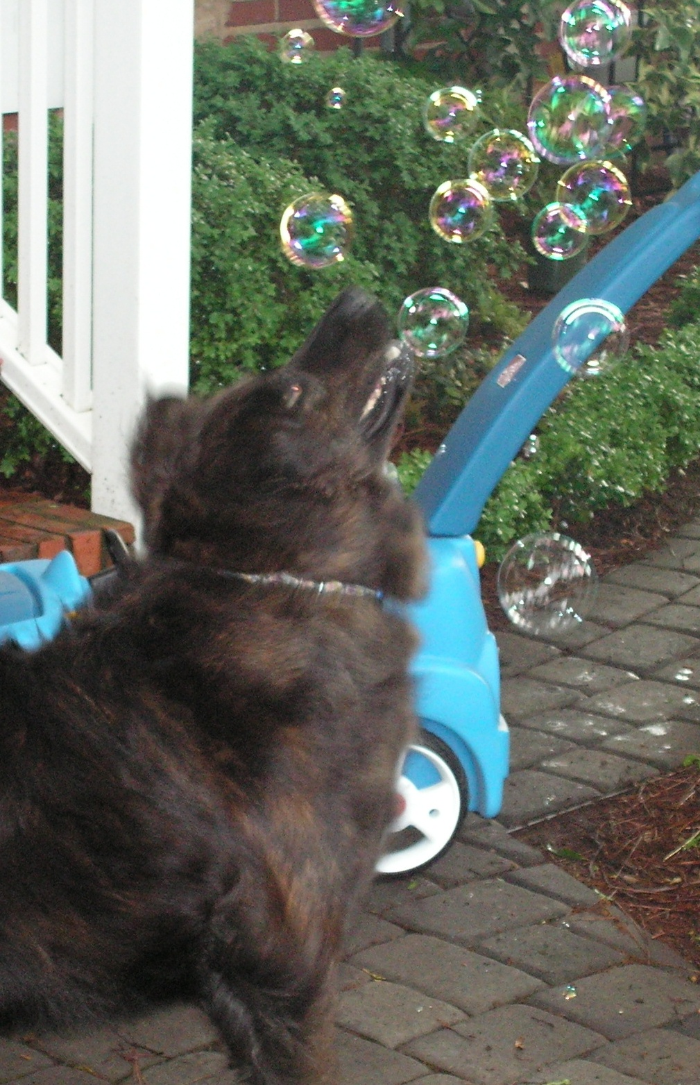 Lola washing her own mouth out with soap bubbles