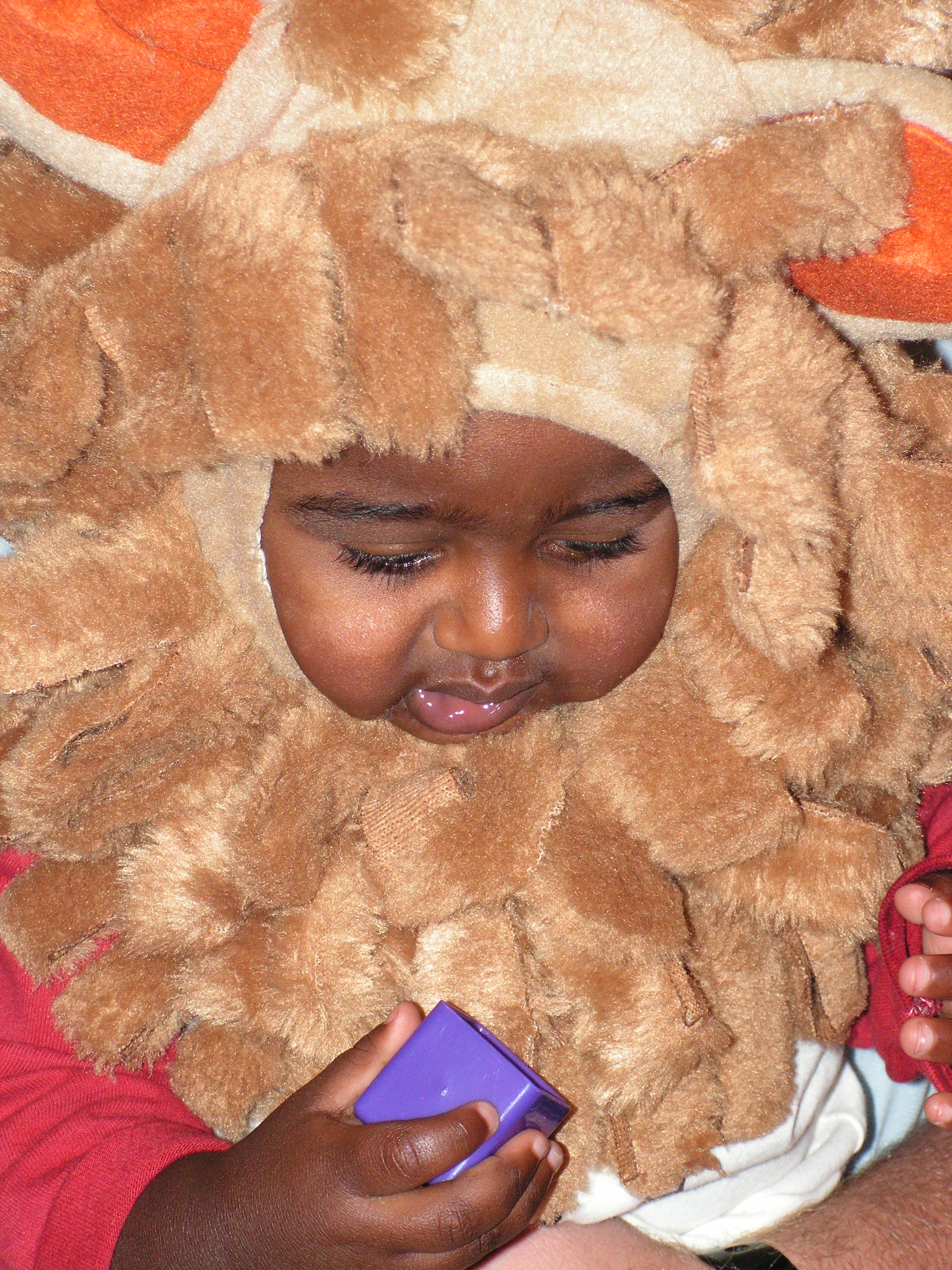 The battle of the costumes... the lion cub