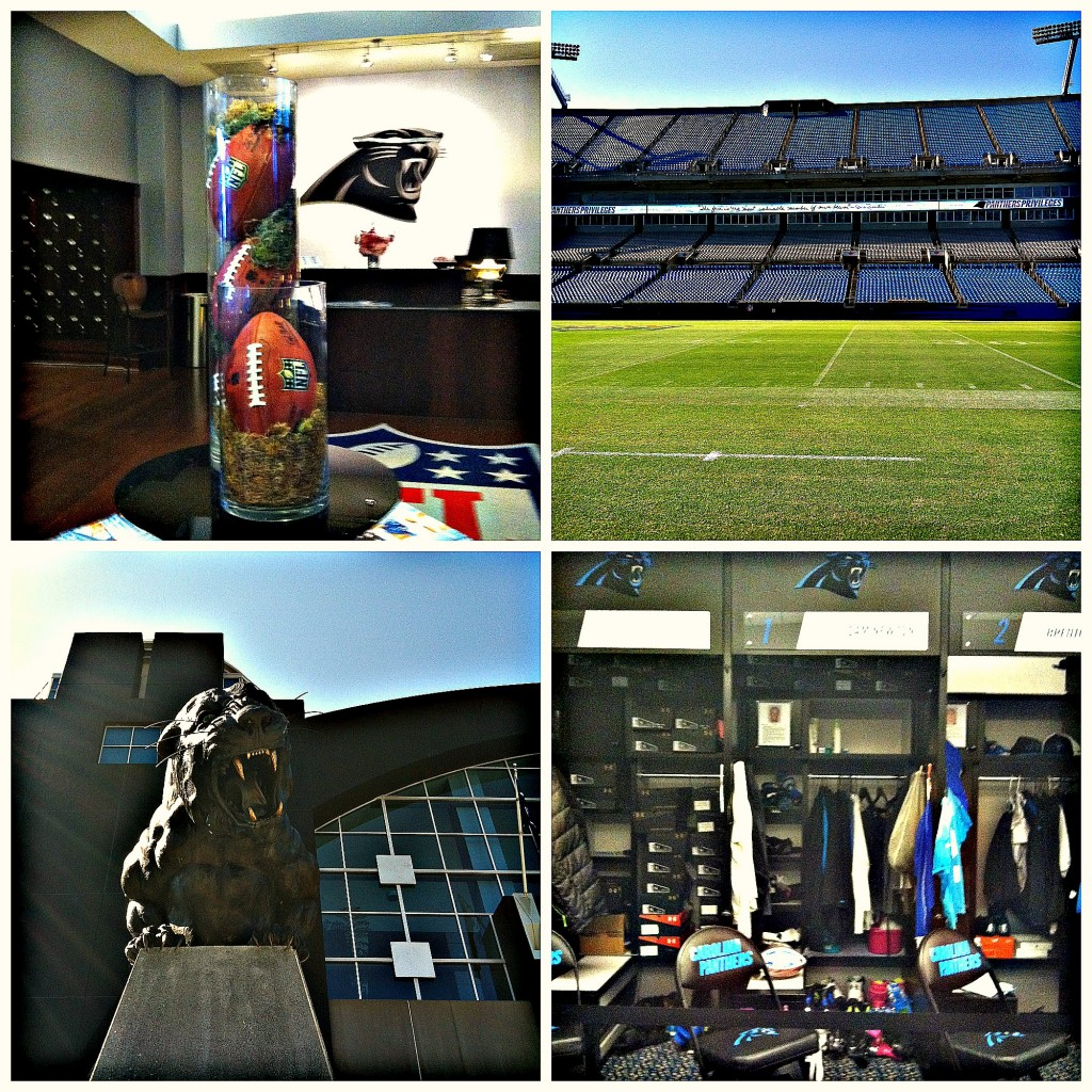 behind the scenes panthers stadium